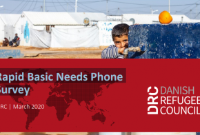 Rapid Basic Needs Phone Survey